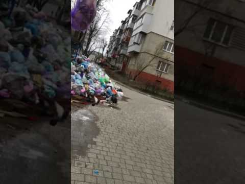 Trash problem in Lviv