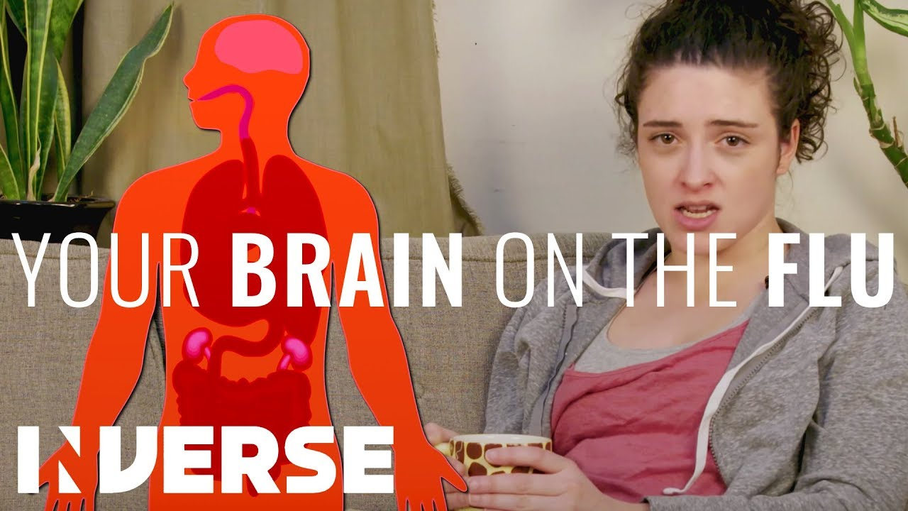 Flu Brain: Here's What the Virus Does to Your Brain - Dr  Axe