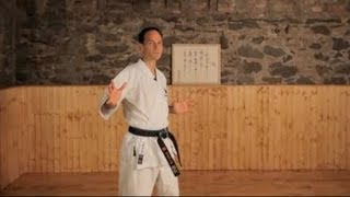 What Are the Major Styles of Karate? | Karate Lessons