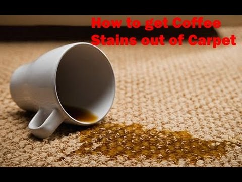 Remove Coffee Stain From Carpet >> How to get Coffee Stains out of Carpet - YouTube
