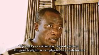 CHENAL DE GBAGA La restauration des mangroves au Togo