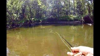 Sight Fishing HUGE Pike- Broke My PB AGAIN!!