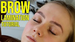 HD Brow Lamination Step By Step Tutorial [Big Brows]