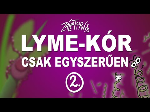 Lyme-kór - csak egyszerűen (2. rész) (ÚJRATÖLTVE)