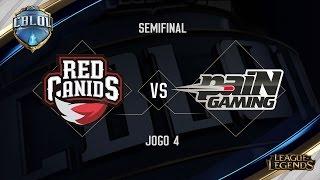 Red Canids x paiN (Jogo 4 - Semifinais) - Primeira Etapa CBLoL