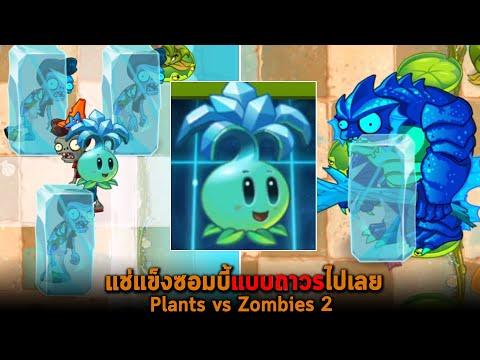 แช่แข็งซอมบี้แบบถาวรไปเลย Plants vs Zombies 2