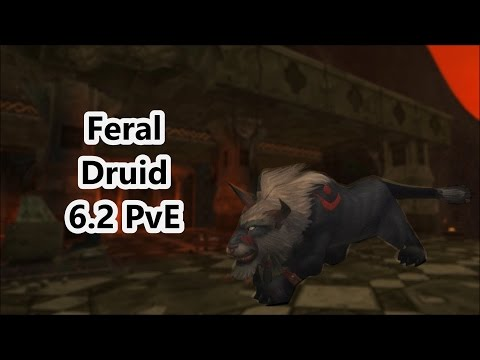 Feral Druid 6.2.3! PvE (updated)