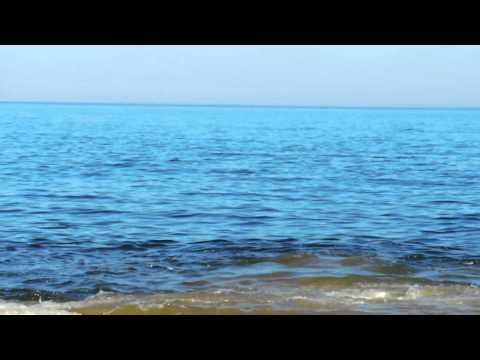Avistamiento de ballenas - Punta Ballena, Uruguay