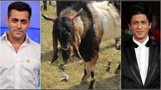 Salman Khan and Shah Rukh Khan on 'SALE' in Goat Markets