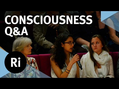 Q&A - The Neuroscience of Consciousness – with Anil Seth