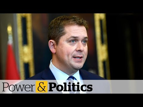 Protesters should 'check their privilege' says Scheer | Power & Politics