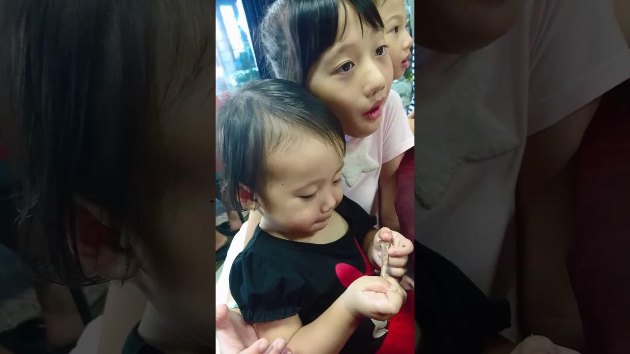 彤彤 - YouTube