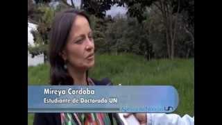 Escudo Guayanés llegaría hasta Colombia - Universidad Nacional de Colombia