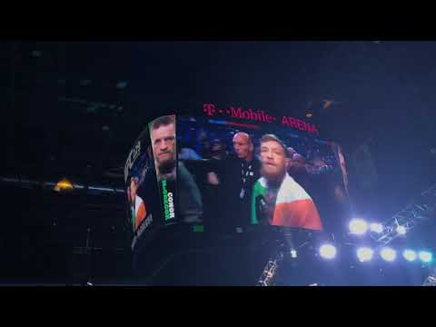 UFC 229 Mcgregor Vs Khabib walk outs and crowd reactions