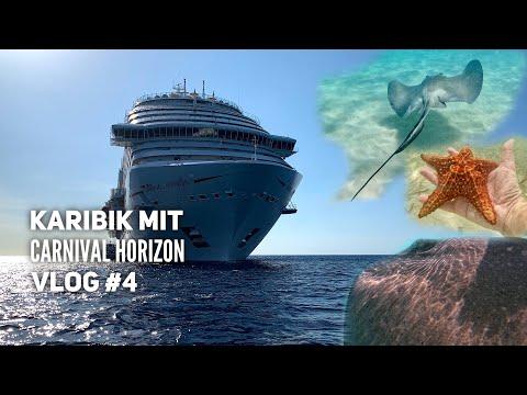 Die Rochen von Grand Cayman - Carnival Horizon Vlog #4