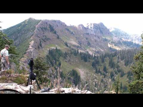 High Country Mule Deer In Montana 2009