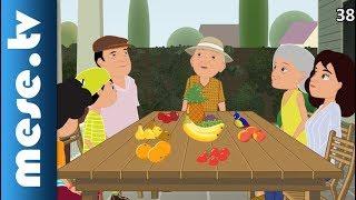 Time for English - Mesék 6. rész (Family Time)