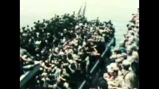 Ofensiva y rendición. 11- NAM la guerra de los 10.000 días. Guerra de Vietnam.