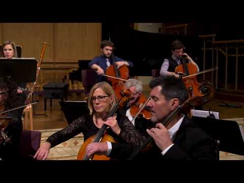 Mozart Sinfonia Concertante - II. Andante - Transcribed for Two Cellos -The Rice Brothers