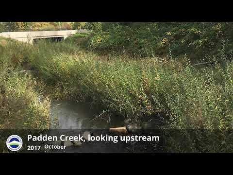 Restoring Padden Creek Habitat - Looking Upstream