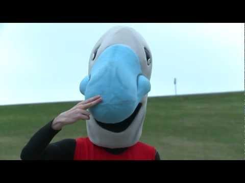 Blue Nose Marathon Wave