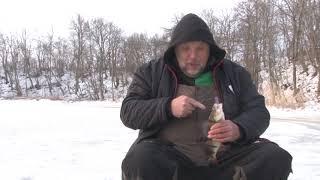 """Охота и рыбалка"": ""Рыболовная школа для взрослых"""