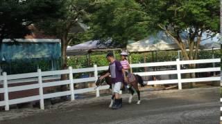 那賀町クラブコルツで行われた一泊二日のイベントでの 乗馬体験の様子の...