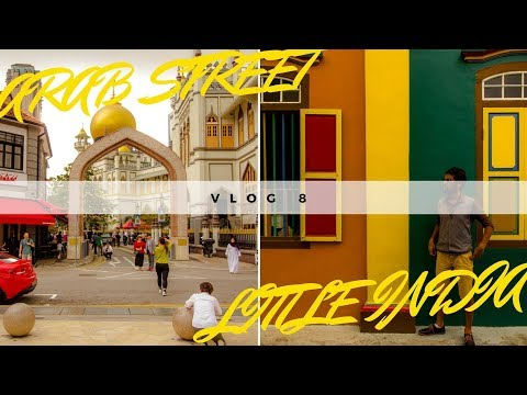 Singapore vlog 8  : little India and Arab street , kampong glam