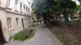 "BOBBY THE UNICORN - ""Duże Drzewa"" OFFICIAL VIDEO"