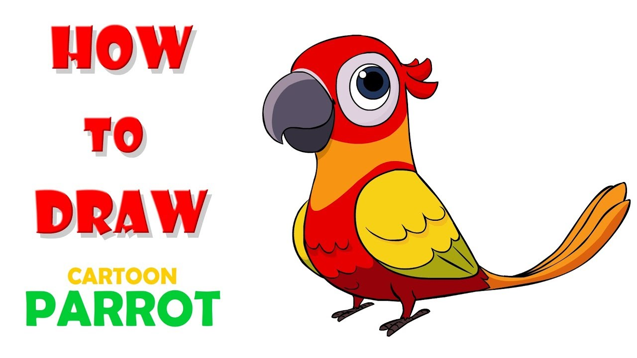 how to draw parrot draw colorful parrot learn cartoon parrot clip art to color parrot clip art images
