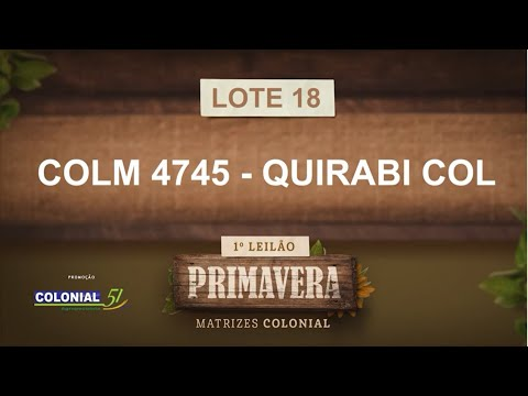 LOTE 18   COLM 4745