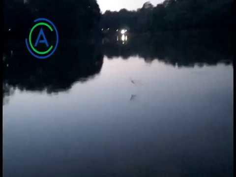 HOROR!! Mancing Malam di Danau Bukit Permai, Cibubur