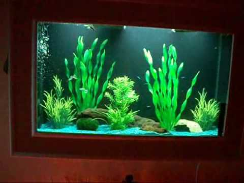 wand aquarium youtube. Black Bedroom Furniture Sets. Home Design Ideas