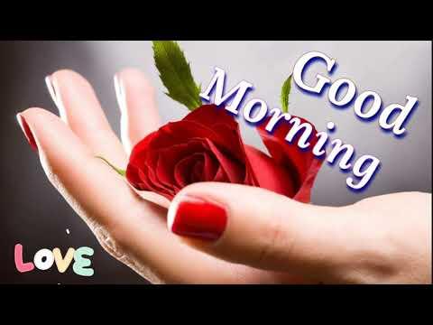 Good Morning Video - Whatsapp Status, Greetings, Wishes, Quotes, Beautiful Massage, Status