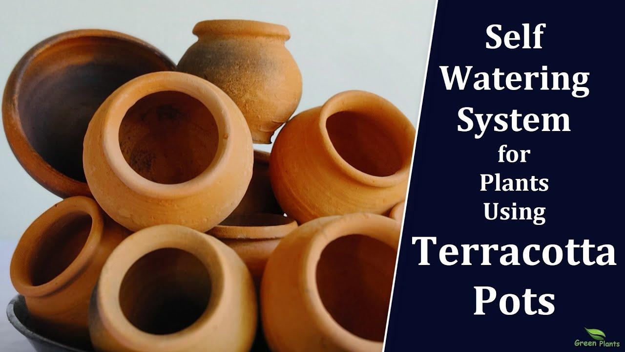Mini Self Watering Garden Using Terracotta Pots   Self Watering System for Houseplants//GREEN PLANTS