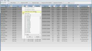 PowerBuilder Datawindow AutoFilter Demo