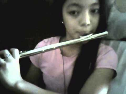 She Looks So Perfect5Seconds of Summer Flute