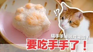 冬至的貓手手湯圓-群貓暴動-大家都長一歲-貓副食食譜-貓鮮食廚房ep175