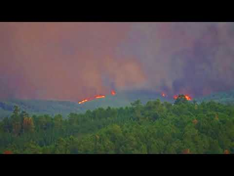 WILD FOREST FIRES, CENTRAL PORTUGAL