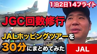 JALホッピングツアー1泊2日14フライトを一挙に紹介 thumbnail