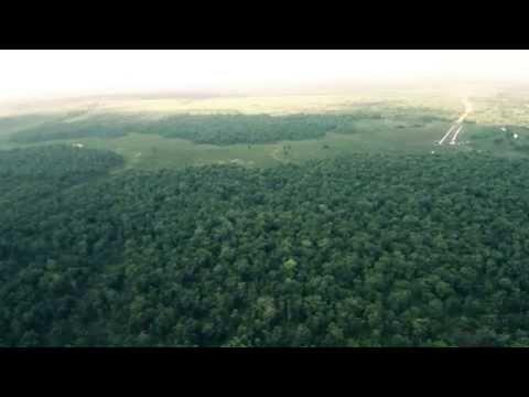 Elephant and Drone Patrols Sumatra