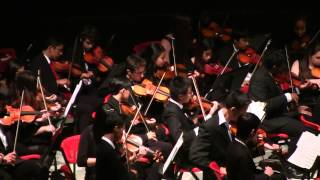 Spring Concert 2014: Beauty & the Beast (String Orchestra)