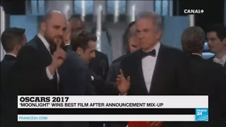 Oscars 2017   the screw up was magnificient, it was a fabulous case of fake news!