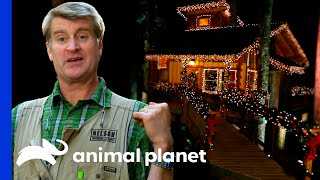 Building A Massive Cozy Christmas Treehouse For The Crew! | Treehouse Masters