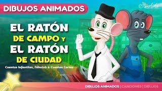 El Ratón de Campo y el Ratón de Ciudad fábula | Cuentos infantiles para dormir & animados