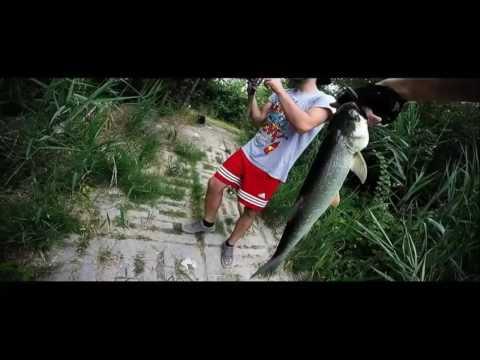 Team RapFish - Aspi in caccia