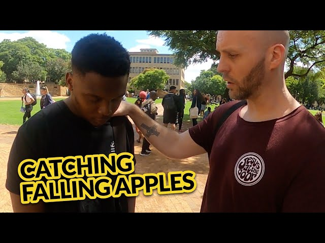 Street Encounters - Catching Falling Apples