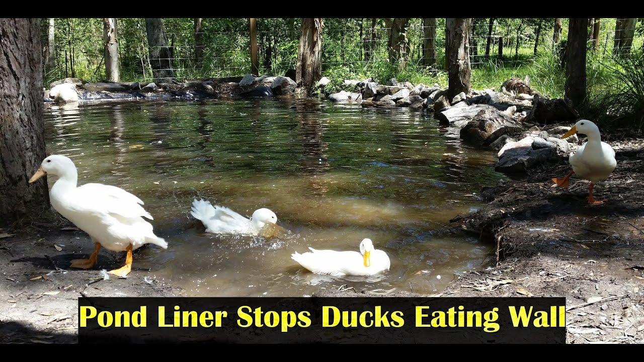 Natural Pond Liner