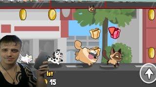 Pets Race - Увлекательные гонки в режиме PvP