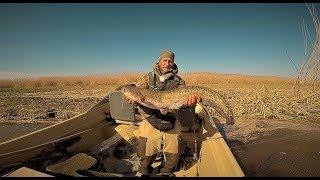 Рыбалка в Астрахани. Апрель 2018! Попался первый Астраханский Усатый Дядя! Сомярик. Отличный Отдых.